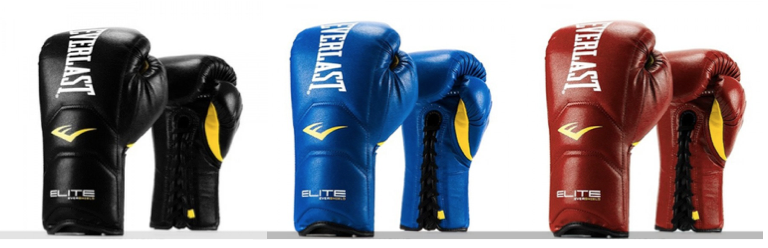 Everlast Elite Laced Training Gloves